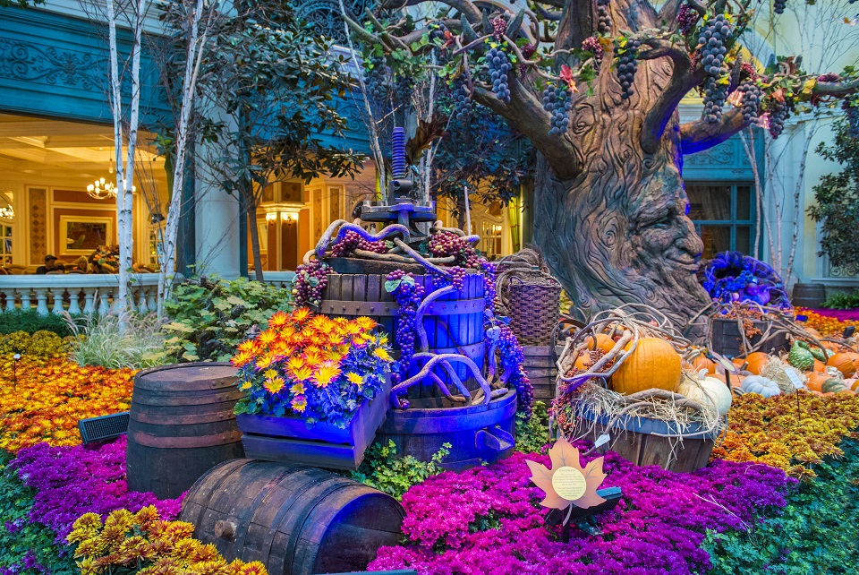 Best places to visit - Bellagio Hotel Conservatory & Botanical Gardens