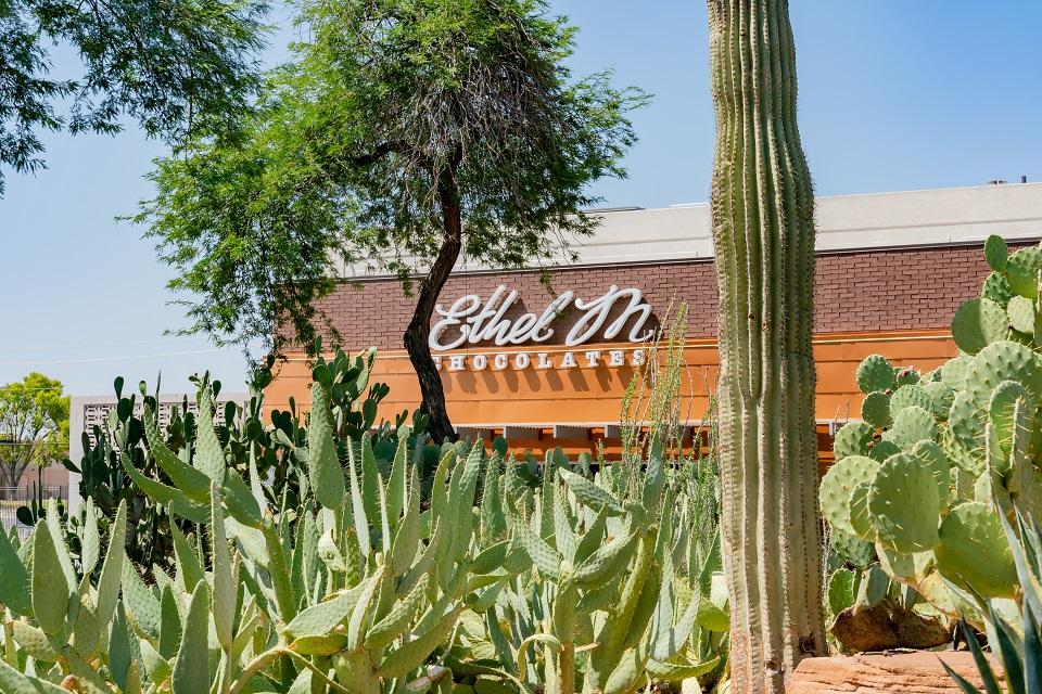 Best places to visit - Ethel M Chocolates & Cactus Garden