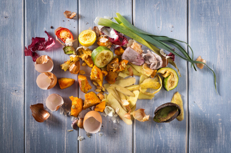 Organic leftover foods